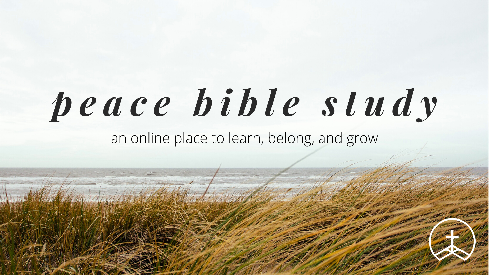 peace bible study event